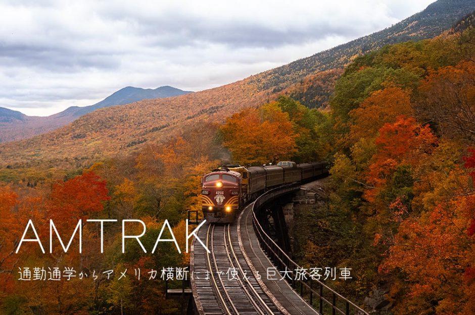【アムトラックとは】料金や予約方法をざっくり解説【アメリカ横断列車】