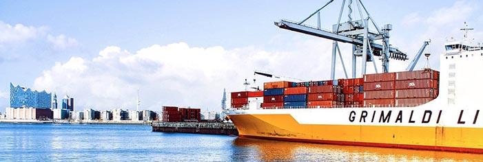 Eビザ(E-1、E-2):貿易駐在員・投資家・駐在員