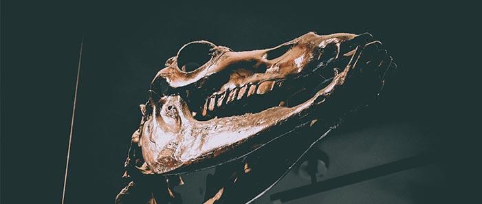 La Brea Tar Pits & Museum:ラ・ブレア・タール・ピッツ・ペイジ博物館
