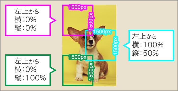 画像の指定の位置をトリミングして表示したい(これもCSSで可能)
